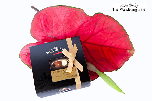 Valrhona 19 Bonbons Gift Box