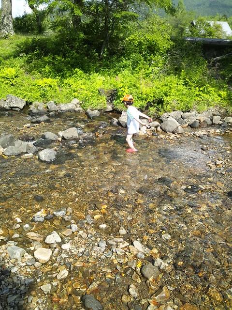 ダム作り2の写真