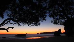 Mares Leg Cove, Dawn (blue polaris) Tags: new morning sea cliff beach sunrise dawn coast marine cathedral cove leg reserve zealand nz northisland peninsula bluff coromandel mares pumice hahei whitianga marrine