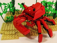 Shubby the Crab-echa (Wyrk Wyze) Tags: ocean life sea plant water robot sand under crab foliage claw beast mecha bot mech saywhatnow