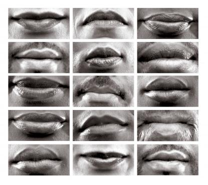 15 Mouths, Lorna Simpson, Permanent Collection - 2002, Studio Museum Harlem