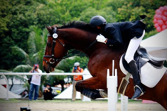 Horseshow_06