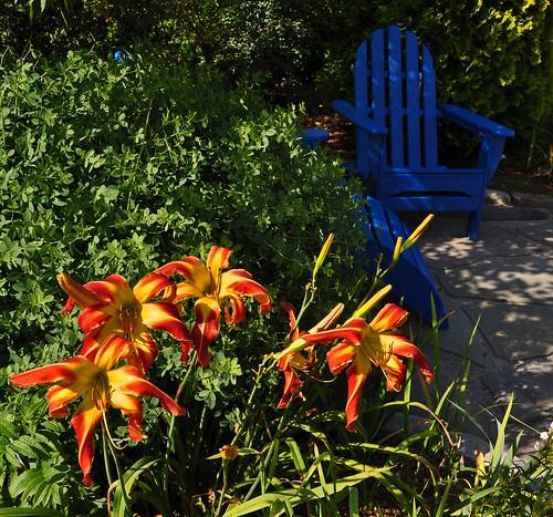 JoEllen's Garden (4)