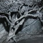 "Tree Carving <a style=""margin-left:10px; font-size:0.8em;"" href=""http://www.flickr.com/photos/14315427@N00/5924103504/"" target=""_blank"">@flickr</a>"