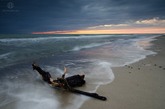 About Foreground Motion II (Dietrich Bojko Photographie) Tags: sea seascape see evening nationalpark meer balticsea baltic lee filters ostsee darss meklenburgvorpommern dietrichbojko vorpommerscheboddenlandschaft darserort d7000 dietrichbojkophotographie