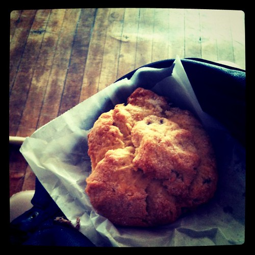 Vegan Chocolate Chip Scone enjoyed at the studio