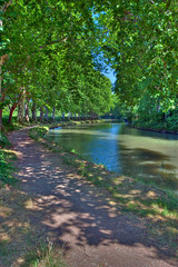 The Sounds of Silence (Paul in Japan) Tags: trees france nature outdoors canal du midi hdr labguedoc