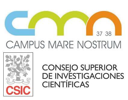 CMN CSIC