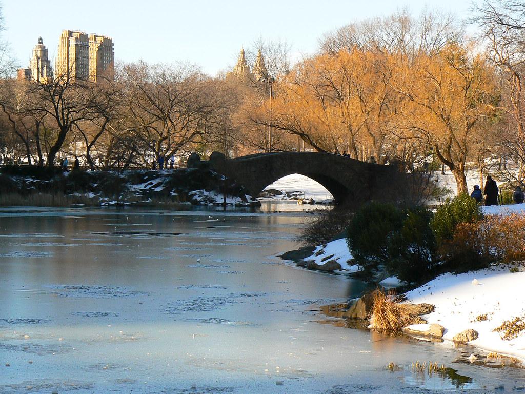Câmera Compacta - Central Park