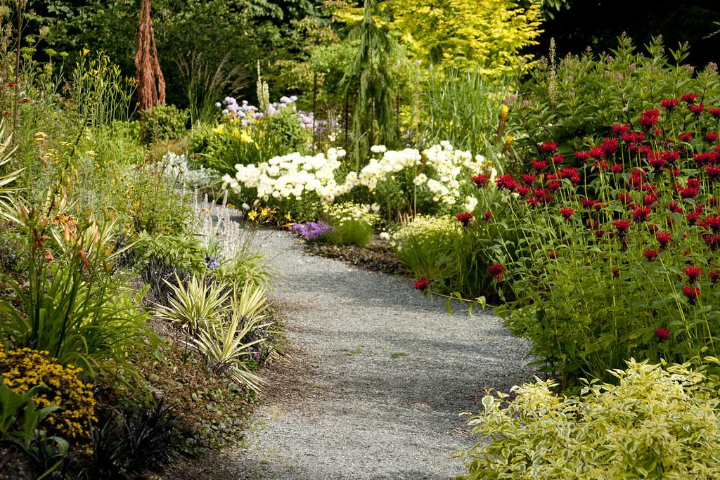 Garden Path with Monarda