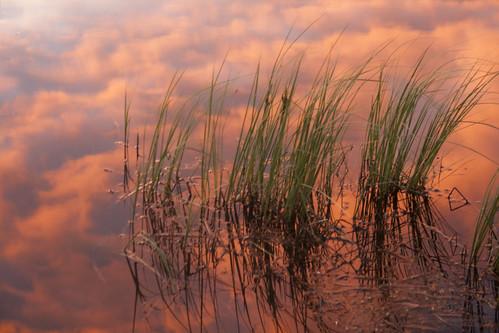 herzog-cabin-sunset-reflection_1