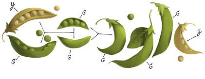 Google Doodle gregormendel11-hp