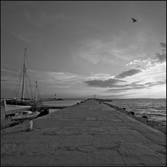Luz del Puerto (m@tr) Tags: sunset bw france blancoynegro canon monocromo legrauduroi canoneos400ddigital mtr sigma1020mmexdc marcovianna portlacamargue luzdelpuerto