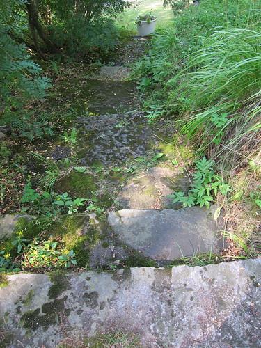 Ruohottuneet kiviportaat Sibeliuksen puutarhassa by Anna Amnell