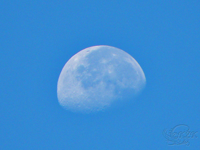 DSCN2059 Morning Moon