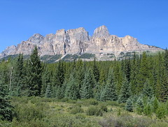 Castle Mountain, Banff NP, Canada (Pixmac_si) Tags: wood trees summer sun canada mountains nature sunshine weather forest landscapes daylight rocks seasons horizon bluesky nobody hills vegetation daytime summertime np nationalparks naturalworld castlemountain exteriors mountainpeaks summits utdoors tipofthehills filebanffnp