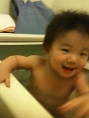 お風呂とらちゃん(7/27)