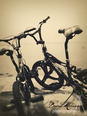 ( (  || Bodour ) Tags: old b red sea brown bicycle flickr purple violet m mohammed jeddah     mohamd       budor        bodour  bodoor