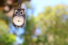 the clock is ticking ({vanilla peaches}) Tags: cute clock necklace bright bokeh watch jewelry owl clocknecklace canonrebelt2i