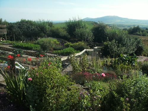 Our Llyn Garden