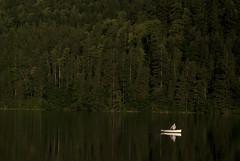 Sunlight Boat (Twilight Tea) Tags: june austria niederösterreich 2011 австрия lunzer ybbstalalps