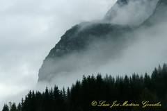 Road Fv724 near Olden (Lucio Jos Martnez Gonzlez) Tags: road trees mountains norway fog forest geotagged norge nationalpark bosque noruega scandinavia 2009 niebla montaas olden parquenacional escandinavia jostedal luciojosmartnezgonzlez luciojosemartinezgonzalez floen geo:lat=61804948888835 geo:lon=68247516667015 sognoffjorden valledefloen fv724