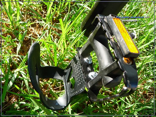 Bicicletas listas para hacer el Camino 5991309611_56f74dd43d