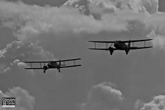 G-ECAN & G-AGJG - De Havilland Australia DH-84A Dragon 3 & De Havlliand DH-89A Dragon Rapide - 110710 - Duxford - Steven Gray - IMG_7918