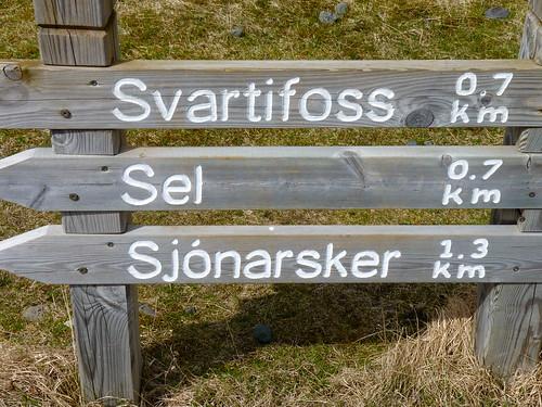 Verso Svartifoss