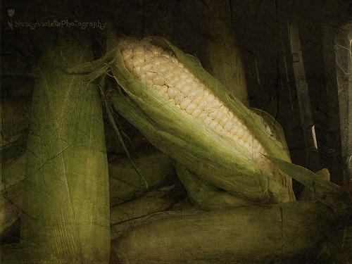 History is gone... time for some corn (Cachapa&#03…