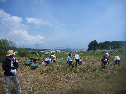 陸前高田市広田町羽根穴, 陸前高田でボランティア Volunteer at Rikuzentakata, Iwate pref, Deeply Damaged Area by Japan Quake
