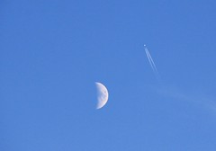 Ignoring the moon (Gerlinde Hofmann) Tags: germany thuringia town weimar buchenwald moon contrail plane traveling flying blue sky evening bicolored twocolors mond bluesky blauerhimmel wolkenloserhimmel
