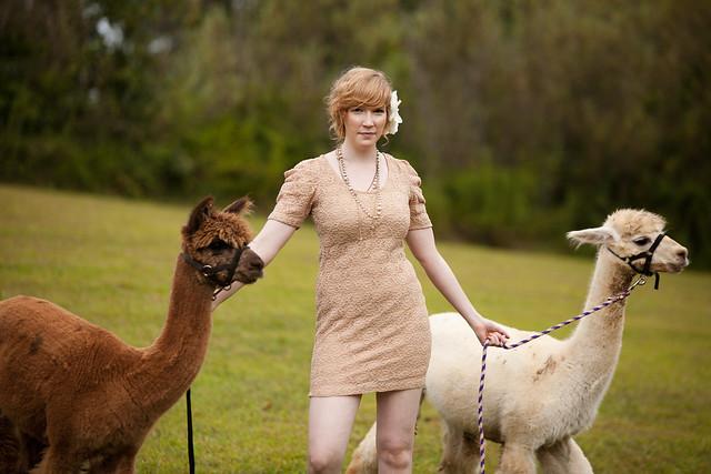 Kristen-alpacas-120-2