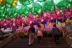 lanternes (jmarnaud) Tags: sea color temple korea lantern buddah pusan 2011