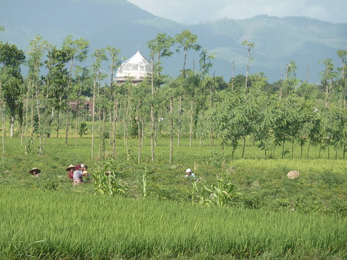 Indo 11-Lombok-Kuta (125)