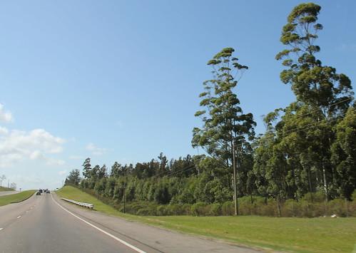 Estrada Montevideu - Punta