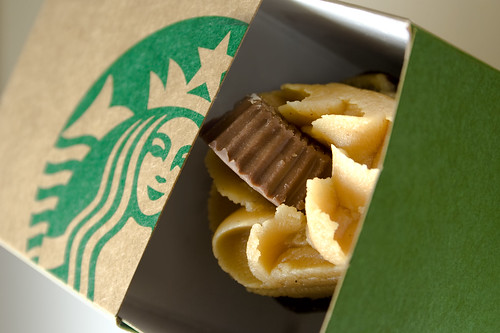 Starbucks Peanut Butter Mini Cupcake