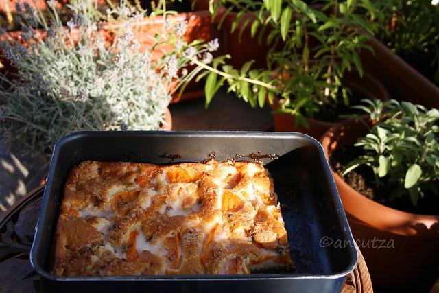 Torta soffice alle albicocche e lavanda