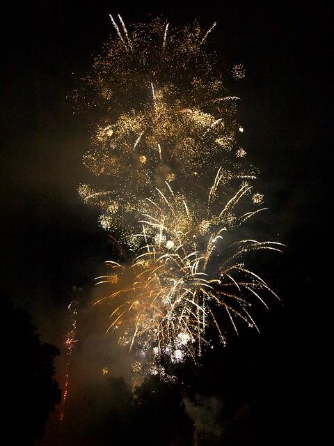 Vos feux d'artifices du 13 ou 14 Juillet 5939552454_57f64a0061_z