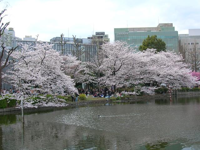 d7-18-ueno-park