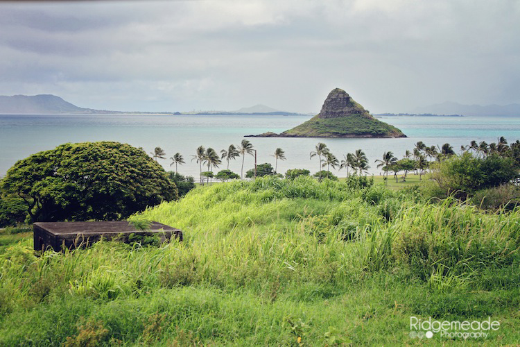Kualoa Ranch #21