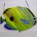 Fish 46