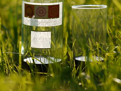 Bottle of Red Wine Wein Rotwein Flasche Drink (hn.) Tags: copyright glass field grass germany bayern deutschland bavaria bottle heiconeumeyer europa europe wine drink oberbayern upperbavaria beverage feld meadow wiese eu alcohol gras redwine alcoholic trinken winebottle alkohol flasche glas vinrouge vino wein simpatico bottleofwine weinflasche getränk drinkingglass copyrighted rotwein wasserglas trinkglas saftglas landkreisbadtölzwolfratshausen badtölzwolfratshausen unalteredimagemaylookbetterafteradjustmentsornot