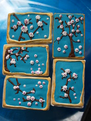 Cherry Blossom Cookies, v.2 (nikkicookiebaker) Tags: cookies out cherry blossom cut decorated