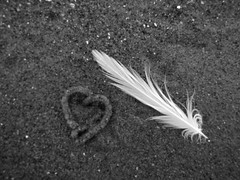 Happy Valentines Day (Niko Khknen) Tags: beach scotland sand edinburgh heart feather portobello ranta portobellobeach hiekka sydn guill rannalla sulka hiekalla