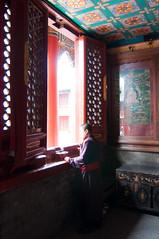 _DSC7873 (durr-architect) Tags: china school court temple peace buddhist beijing buddhism prince palace monastery harmony lama tibetan han dynasty emperor qing kangxi yonghegong lamasery monasteries yongzheng eunuchs