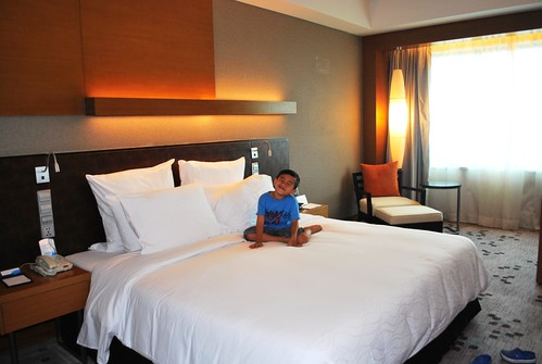 Radisson Blu Hotel Room 2