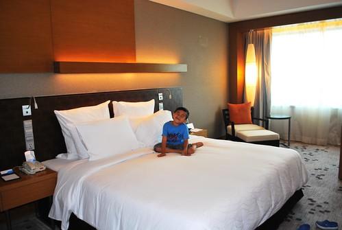 Radisson Blu Hotel Room 2