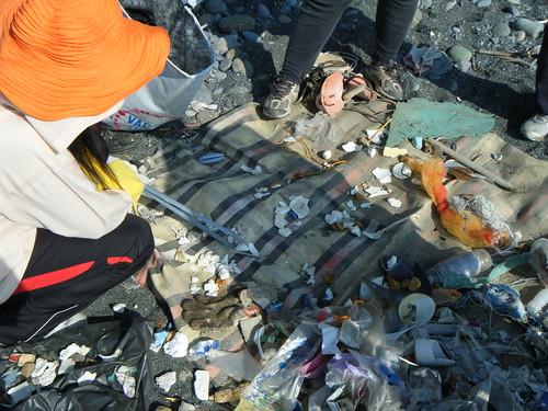 面對礫石灘上零零碎碎的各式塑膠廢棄物,志工們耐著酷熱像柯南般拼湊出廢棄物的原貌