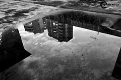 Reflections... (Pablin79) Tags: sky bw white black reflection water argentina monochrome digital canon buildings eos reflex explore 5d 28135mm pipa 2010 misiones posadas markii canonef28135mmf3556isusm explored canoneos5dmarkii 5dmkii pabloreinsch pabloreinschphotography pablin79